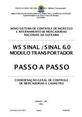 PIN - passo a passo.pdf
