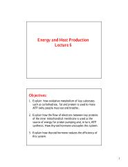 06 ENDC 413 Block-Energy and Heat Production-Lecture 6.pdf