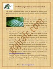 Agrochemical Research Involves the Development.pdf